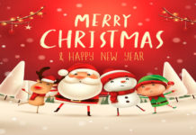 Healthy Christmas and New Year Celebration